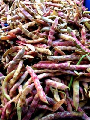 Cranberry Beans Galavant Girl